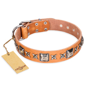 """Glamour Finery"" FDT Artisan Female Mastiff collar of natural leather with stylish old-looking circles"