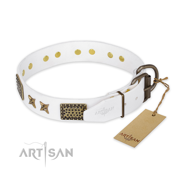 Strong fittings on full grain leather collar for your attractive doggie