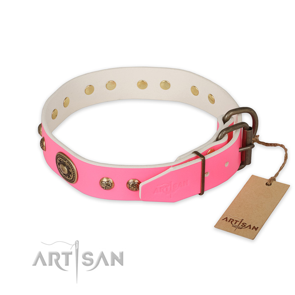 Rust-proof D-ring on leather collar for basic training your canine