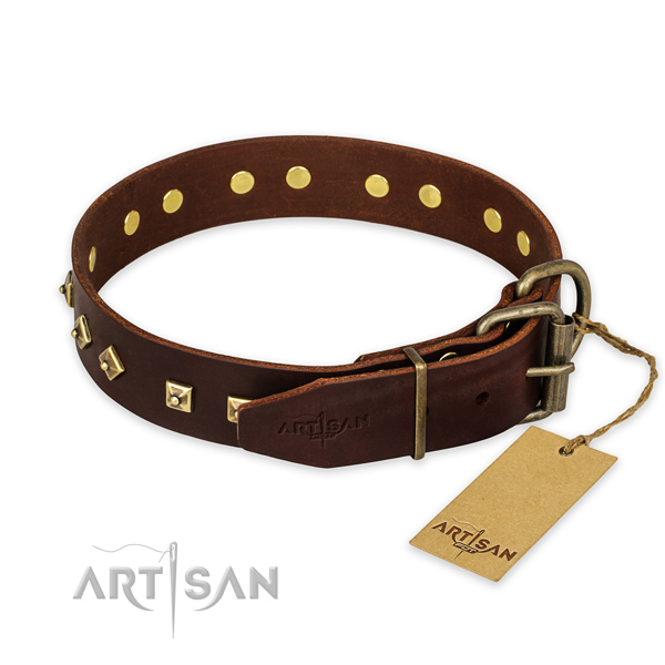 Rust resistant buckle on genuine leather collar for basic training your four-legged friend