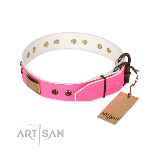 Corrosion proof traditional buckle on genuine leather dog collar for your pet