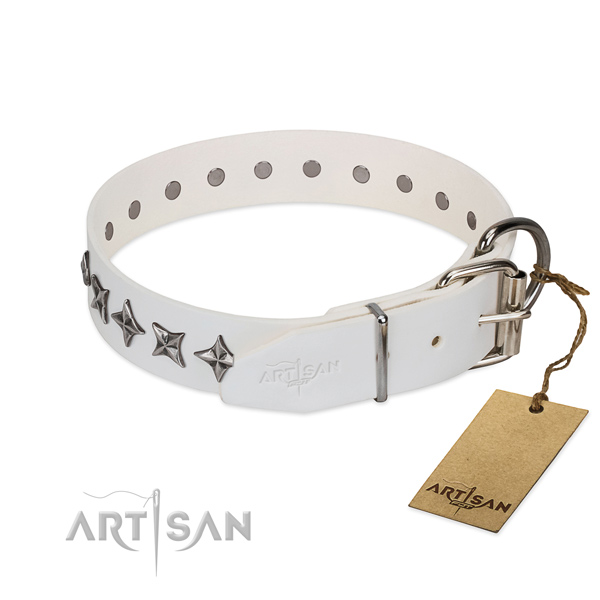 Comfy wearing adorned dog collar of finest quality full grain leather
