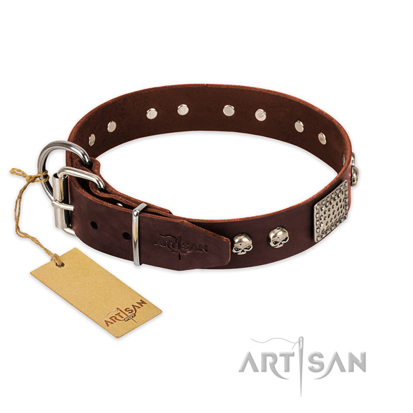 Corrosion proof traditional buckle on everyday use dog collar