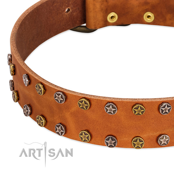 Stylish walking genuine leather dog collar with stylish design decorations