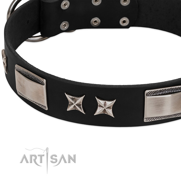 Reliable leather dog collar with strong hardware