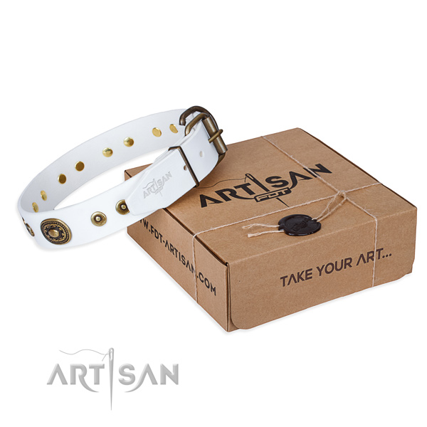 Full grain leather dog collar made of reliable material with reliable buckle