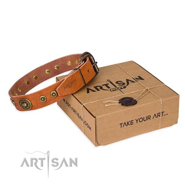 Full grain leather dog collar made of soft material with rust-proof traditional buckle