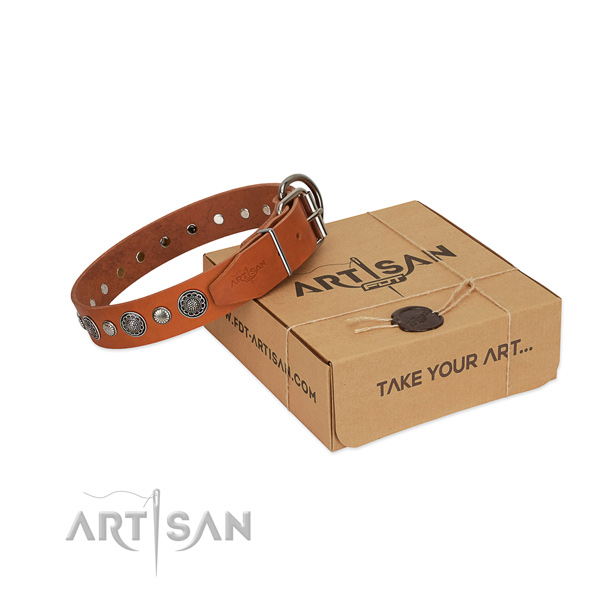 High quality full grain genuine leather dog collar with unusual studs