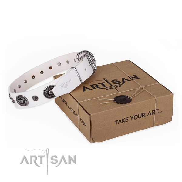 Top rate leather dog collar handmade for stylish walking