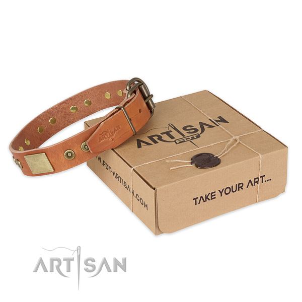 Durable buckle on full grain leather dog collar for everyday use