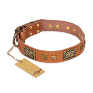 """Cosmic Traveller"" FDT Artisan Adorned Leather Mastiff Collar with Old Bronze-Plated Stars and Plates"