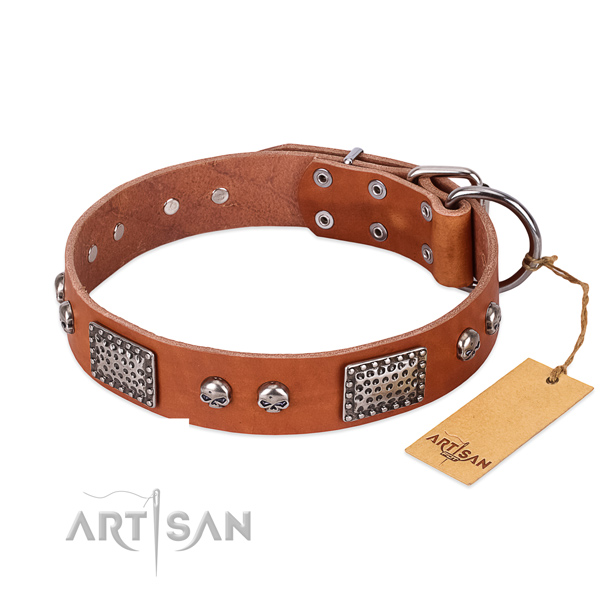 Easy to adjust leather dog collar for stylish walking your canine