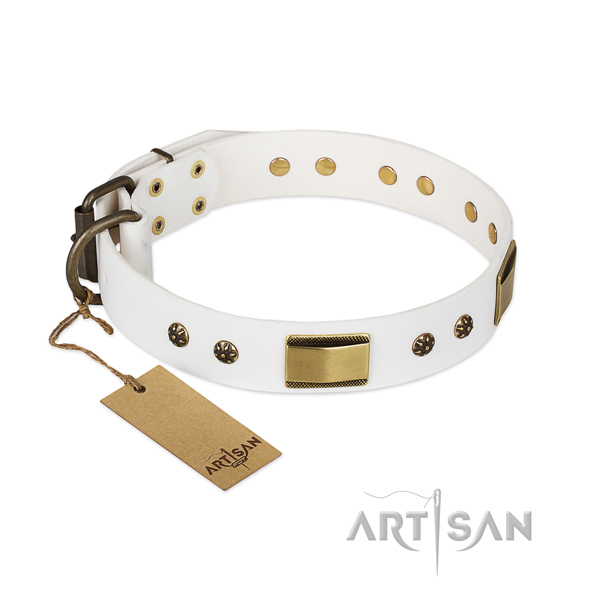 Stunning full grain leather collar for your four-legged friend