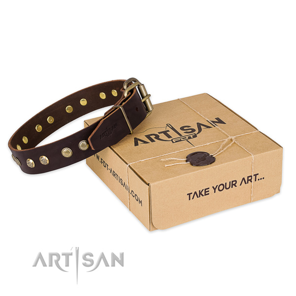 Corrosion resistant fittings on full grain leather collar for your handsome canine