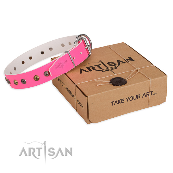 Daily walking dog collar with Incredible strong adornments