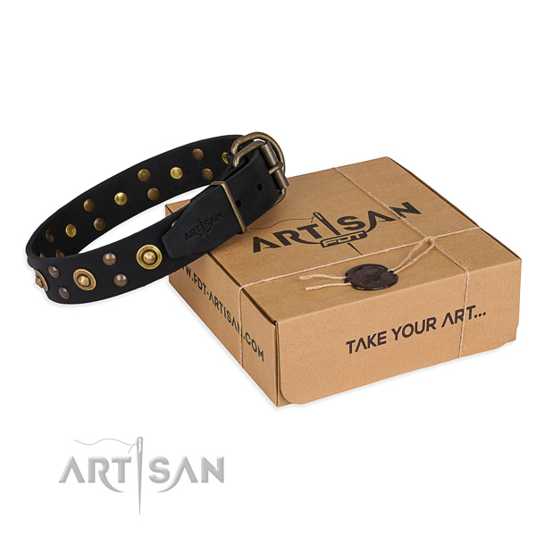 Corrosion proof traditional buckle on genuine leather collar for your beautiful four-legged friend