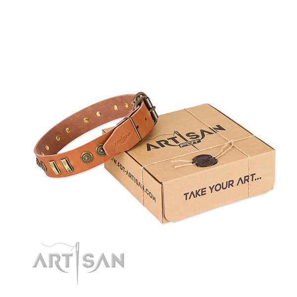 Rust-proof decorations on natural leather dog collar for your dog
