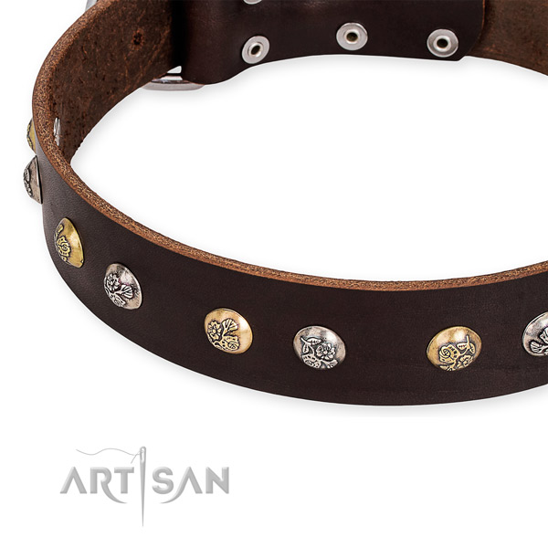 Natural genuine leather dog collar with incredible strong embellishments