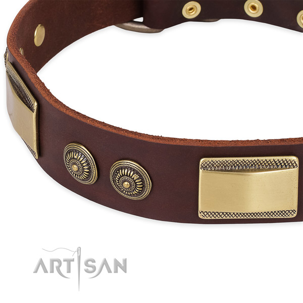 Corrosion proof decorations on full grain genuine leather dog collar for your doggie