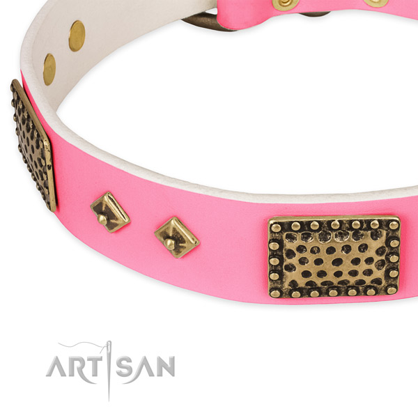 Natural genuine leather dog collar with embellishments for everyday walking