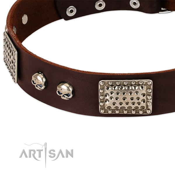 Strong traditional buckle on full grain natural leather dog collar for your dog