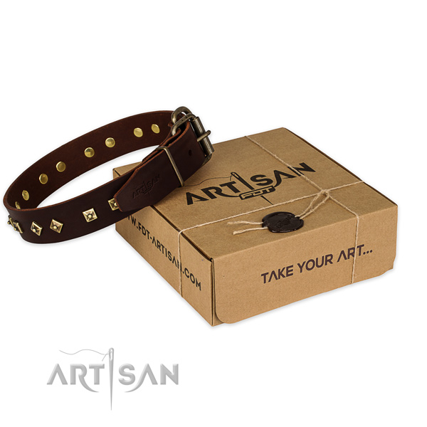 Rust resistant buckle on genuine leather dog collar for walking