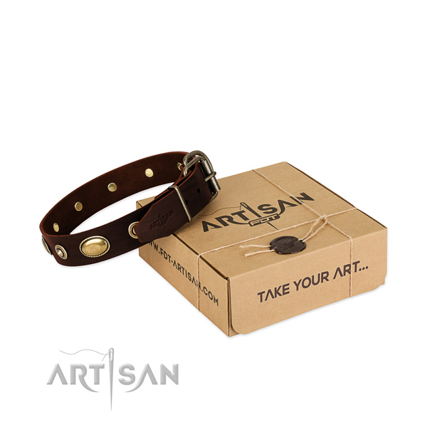 Rust resistant fittings on natural leather dog collar for your pet