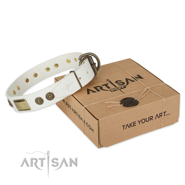 Rust resistant traditional buckle on natural genuine leather dog collar for comfy wearing