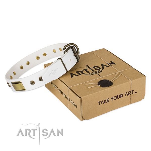 Fashionable full grain genuine leather collar for your lovely dog