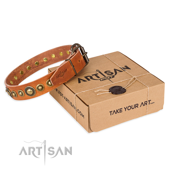 High quality full grain natural leather dog collar made for stylish walking