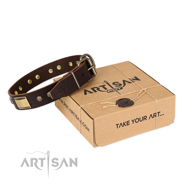 Extraordinary genuine leather collar for your attractive pet