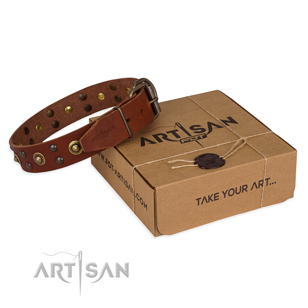 Strong fittings on full grain genuine leather collar for your impressive four-legged friend