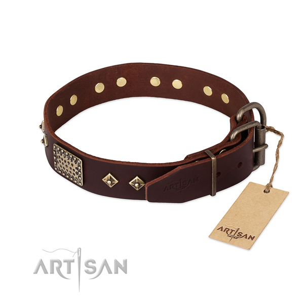 Full grain leather dog collar with rust-proof hardware and decorations
