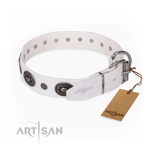 Reliable leather dog collar created for everyday use