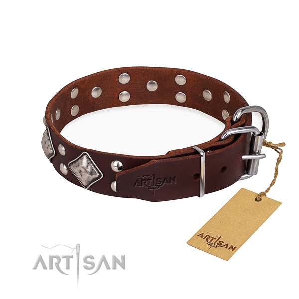 Genuine leather dog collar with trendy reliable embellishments