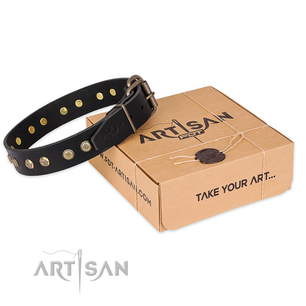 Durable D-ring on natural genuine leather collar for your attractive four-legged friend