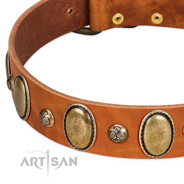 Natural leather dog collar with stylish design decorations
