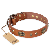 """Stunning Dress"" FDT Artisan Tan Leather Mastiff Collar with Old Bronze Look Plates and Studs"