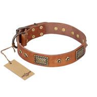 """Catchy Look"" FDT Artisan Decorated Tan Leather Mastiff Collar"