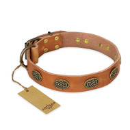 """Magic Amulet"" FDT Artisan Tan Leather Mastiff Collar with Oval Studs"