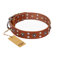 """Silver Elegance"" FDT Artisan Decorated Leather Mastiff Collar with Old Silver-Like Plated Studs and Cones"