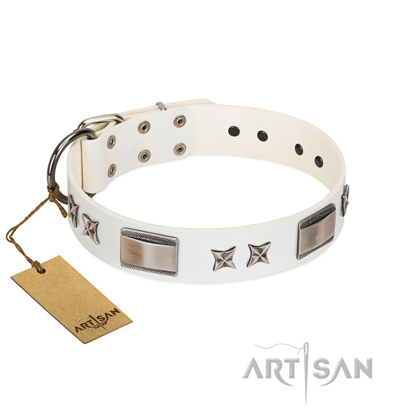 Exquisite dog collar of genuine leather