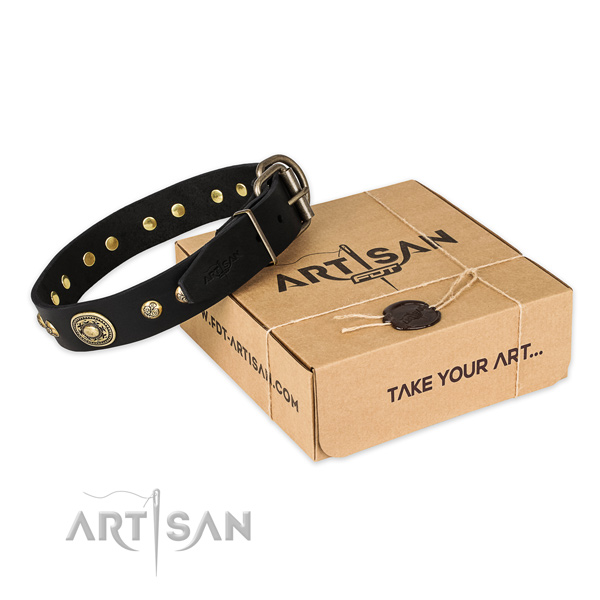 Corrosion resistant hardware on full grain genuine leather dog collar for fancy walking