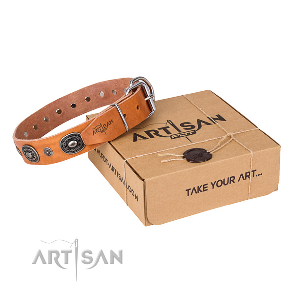 Best quality full grain natural leather dog collar created for stylish walking