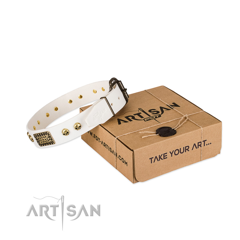 Reliable buckle on dog collar for daily walking