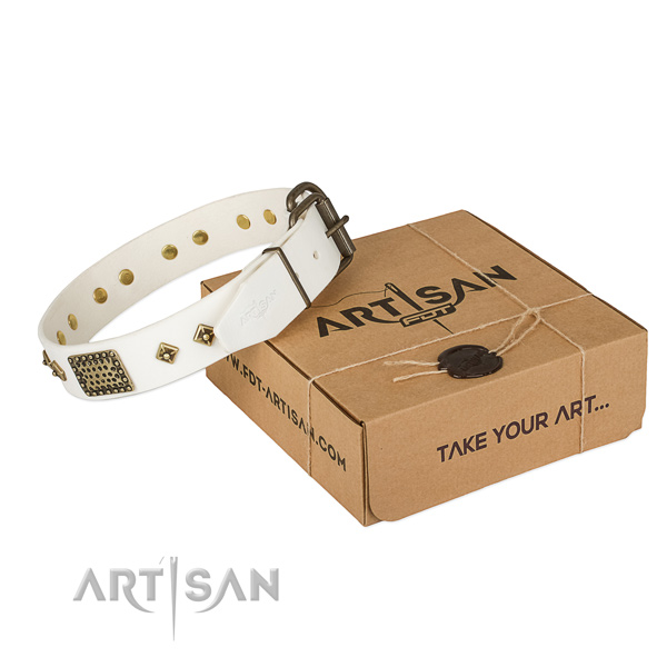 Perfect fit genuine leather collar for your attractive canine