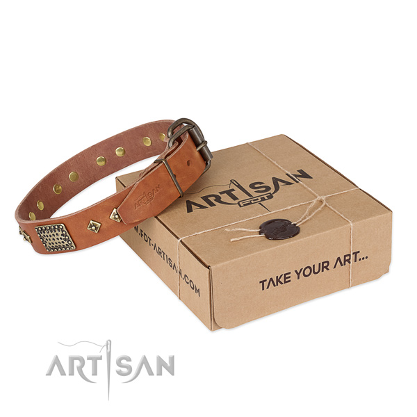 Designer full grain genuine leather collar for your beautiful four-legged friend