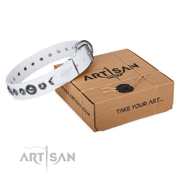 Full grain natural leather dog collar made of reliable material with strong hardware