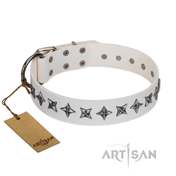 Walking dog collar of durable genuine leather with studs