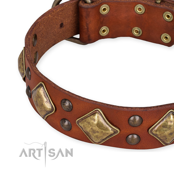 Full grain leather collar with rust resistant D-ring for your stylish canine